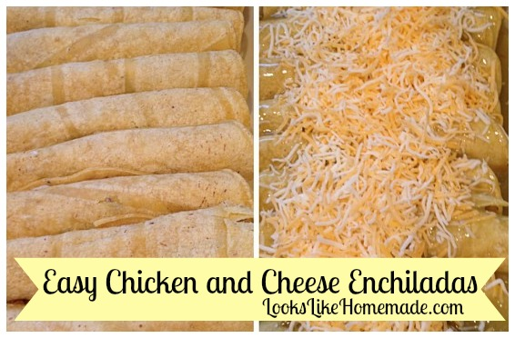 Day 2 Dinner – Cheese & Chicken Enchiladas