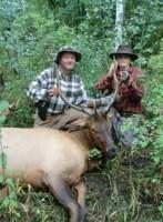 todd elk crop